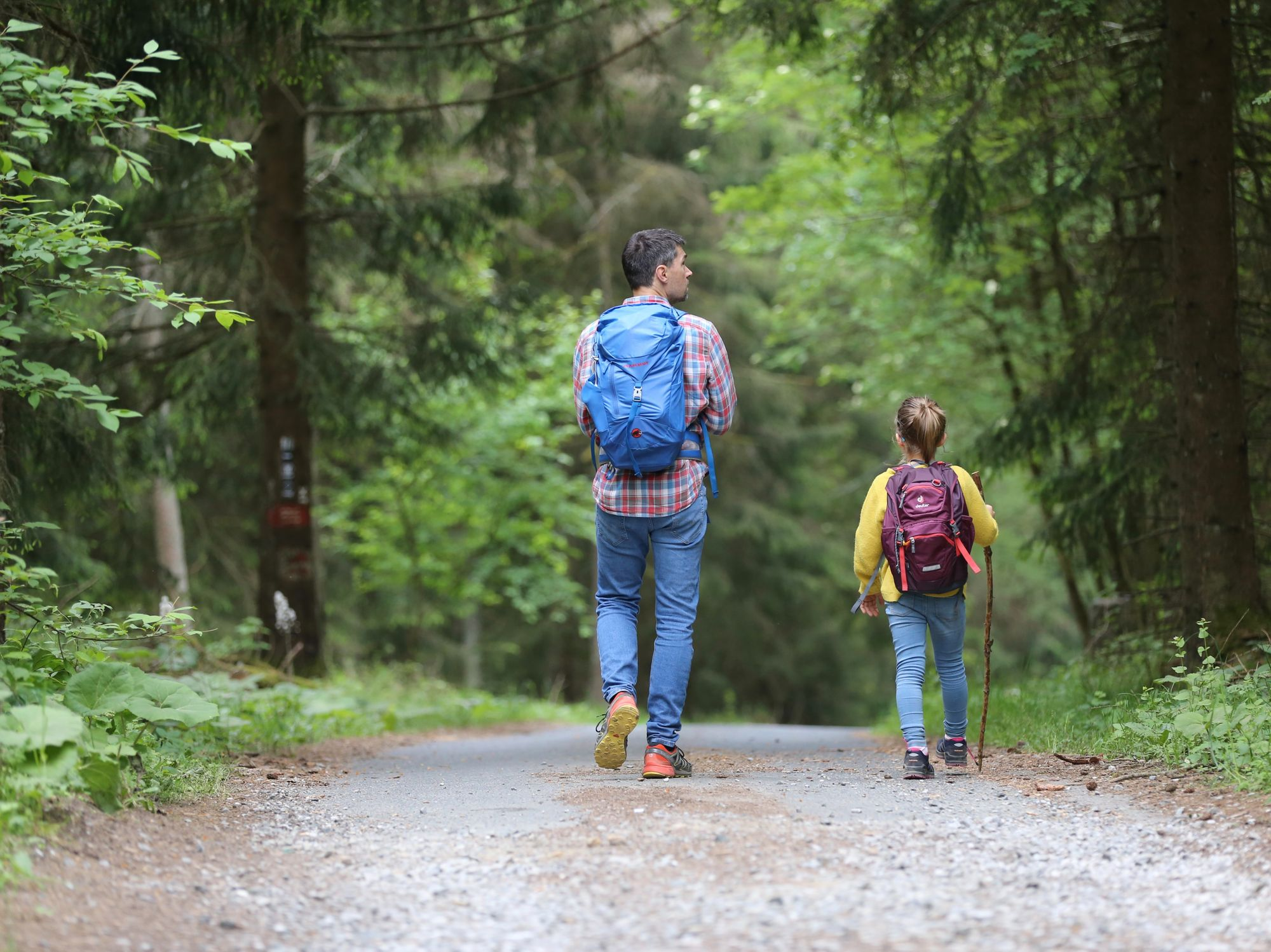 Parent and child hiking in the woods.